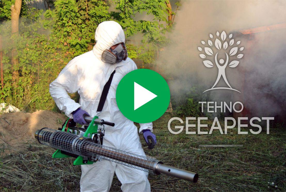 video-image-geea-pest.jpg
